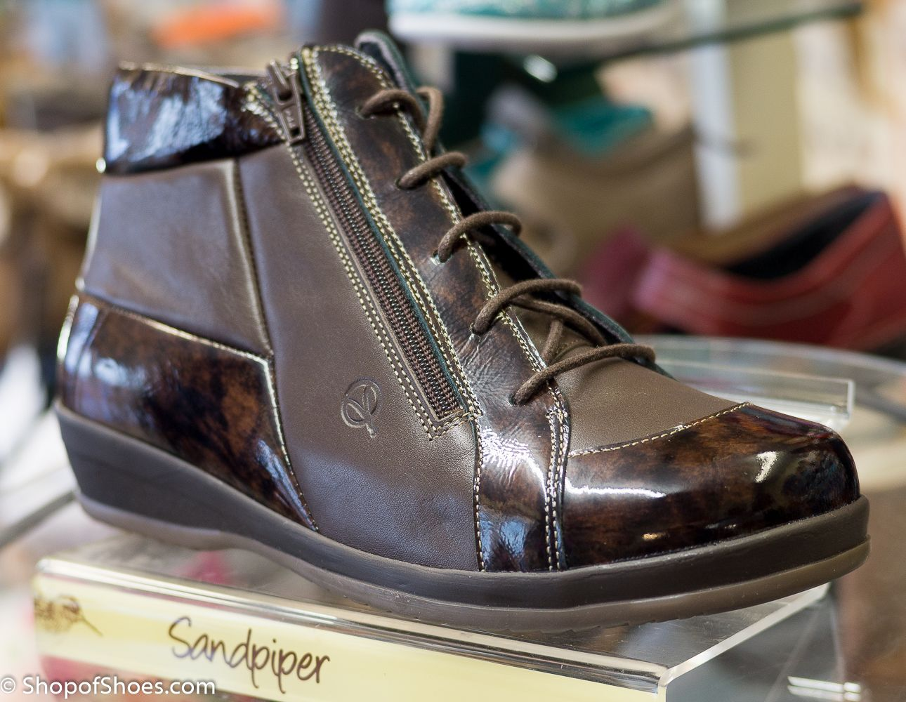 21bb58005a9 Sandpiper variable wide fit 4E-6E leather zip and laced boot with twin zip  for extra easy access. Available from our shop now on the Hampshire  Berkshire ...